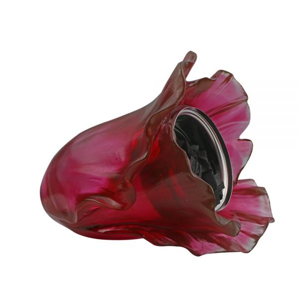 Touchofoud Burner Red Cabbage Right View
